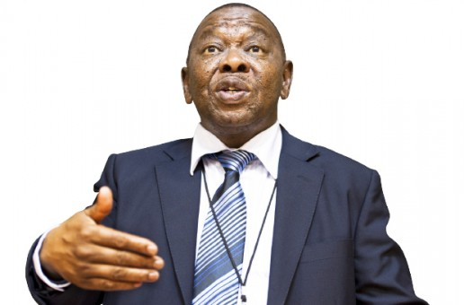 Nzimande calls for free higher education